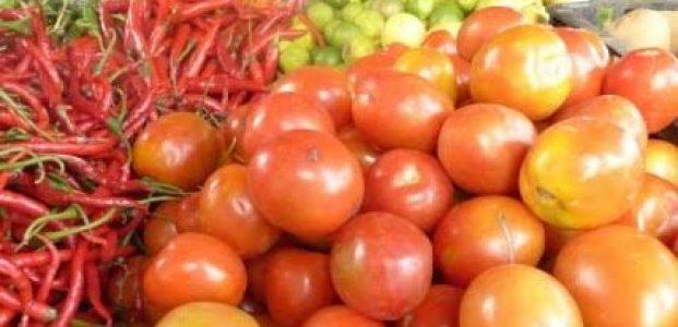 Tomat Pencetus Inflasi Sulut Tertinggi di Indonesia